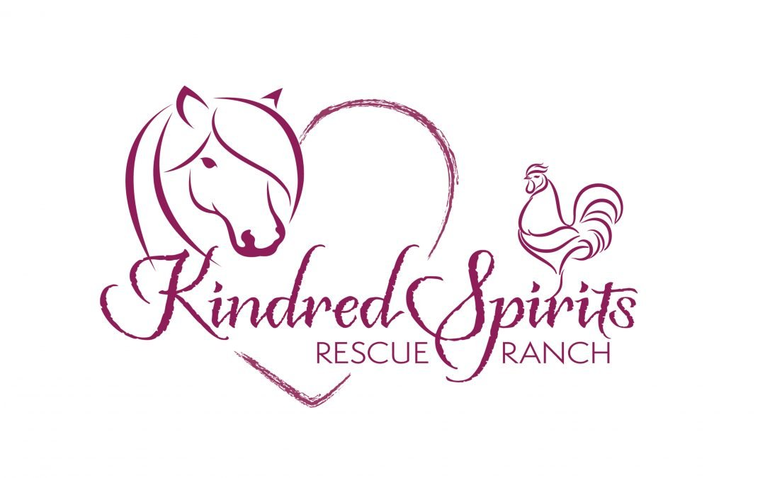 Kindred Spirits Rescue Ranch